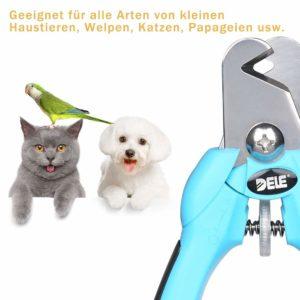 como cortar las garas de mi perro